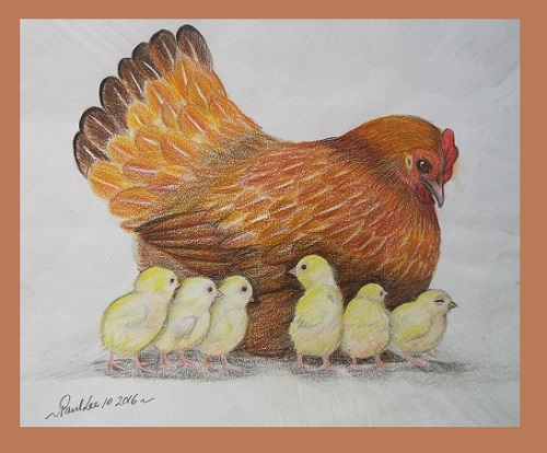 Coloured Pencil Art Hen and Chicks