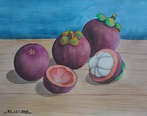 Watercolour Mangosteen