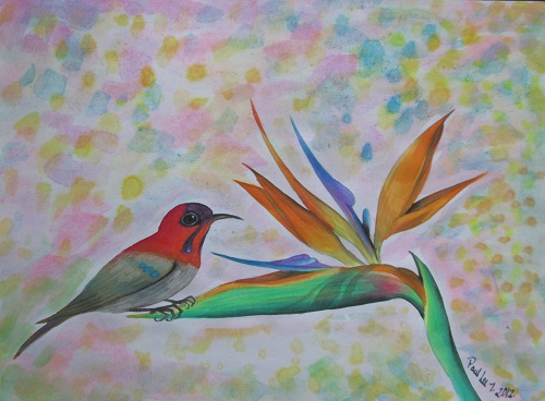 Water Colour Bird of Paradise 2