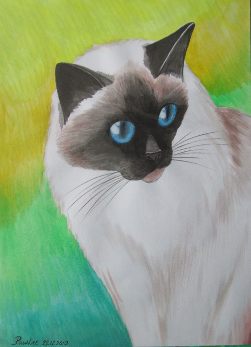 Water Colour Cat 2